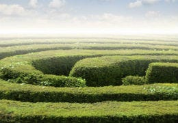 A traditional hedge maze with blue sky