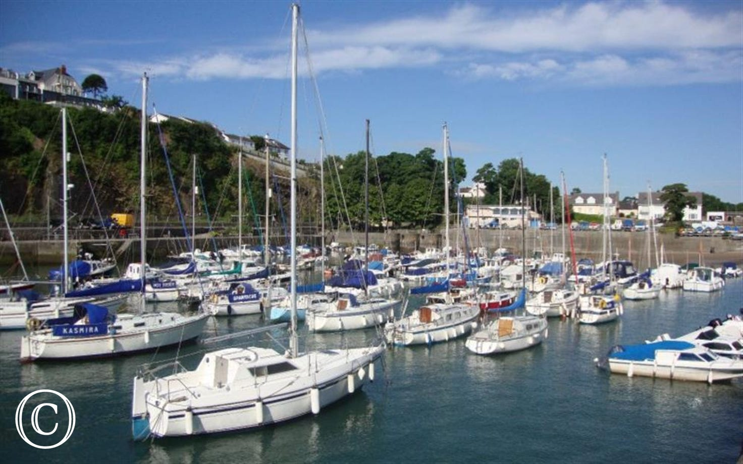 Boat trips leave the harbour-side in Saundersfoot in the Summer months.