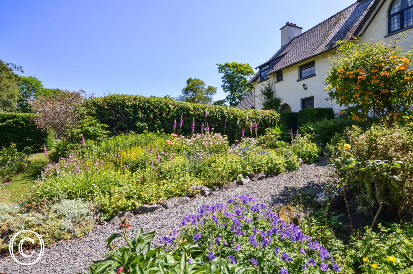 A traditional cottage garden in the June sunshine