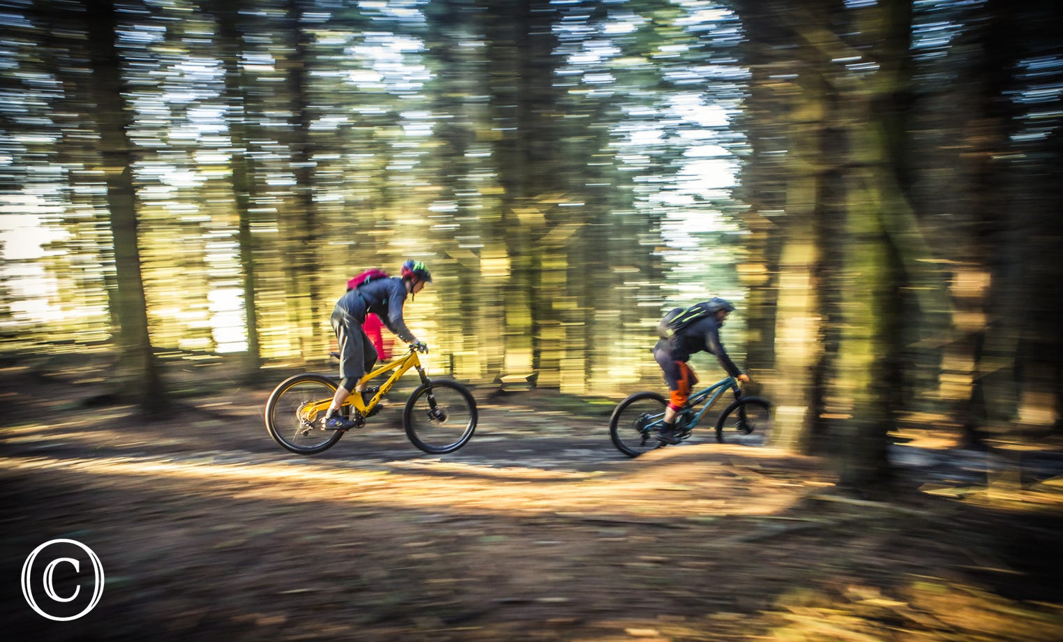 Mountain Biking with One Planet Adventure at Llandegla Forest