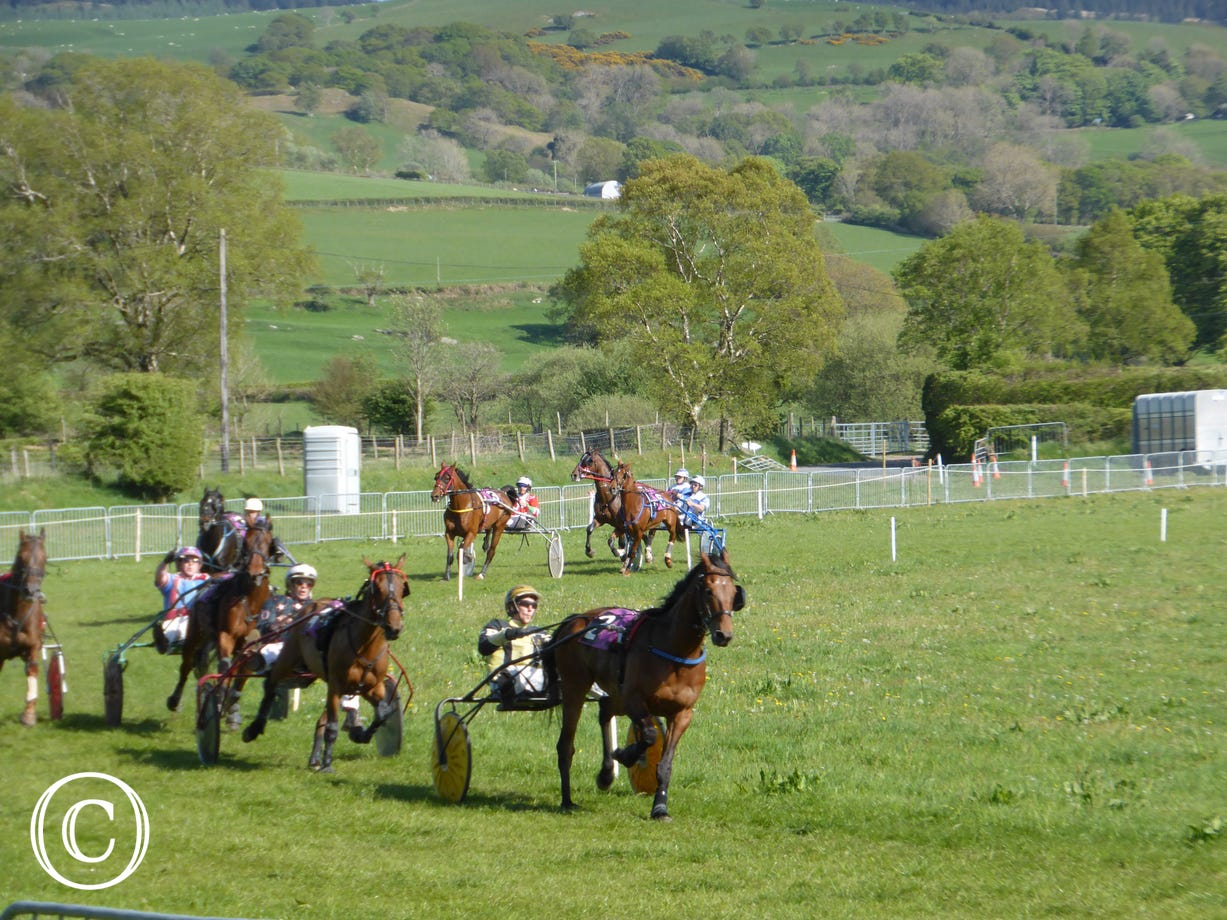 Tregaron Trotting Club - Welsh Festival of Harness Racing