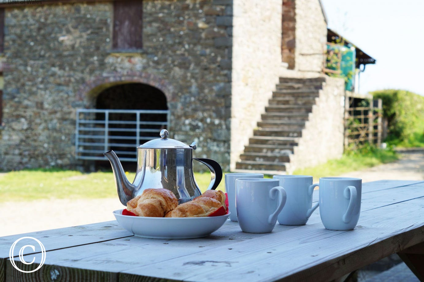 Morning tea in front of the farmhouse