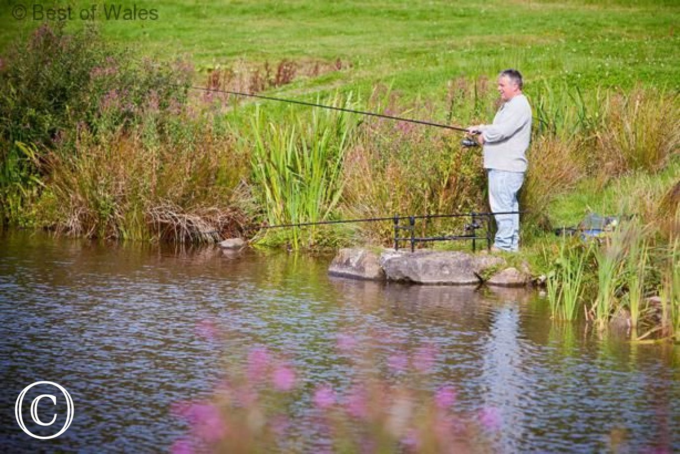 Course fishing, game fishing and sea fishing all available locally