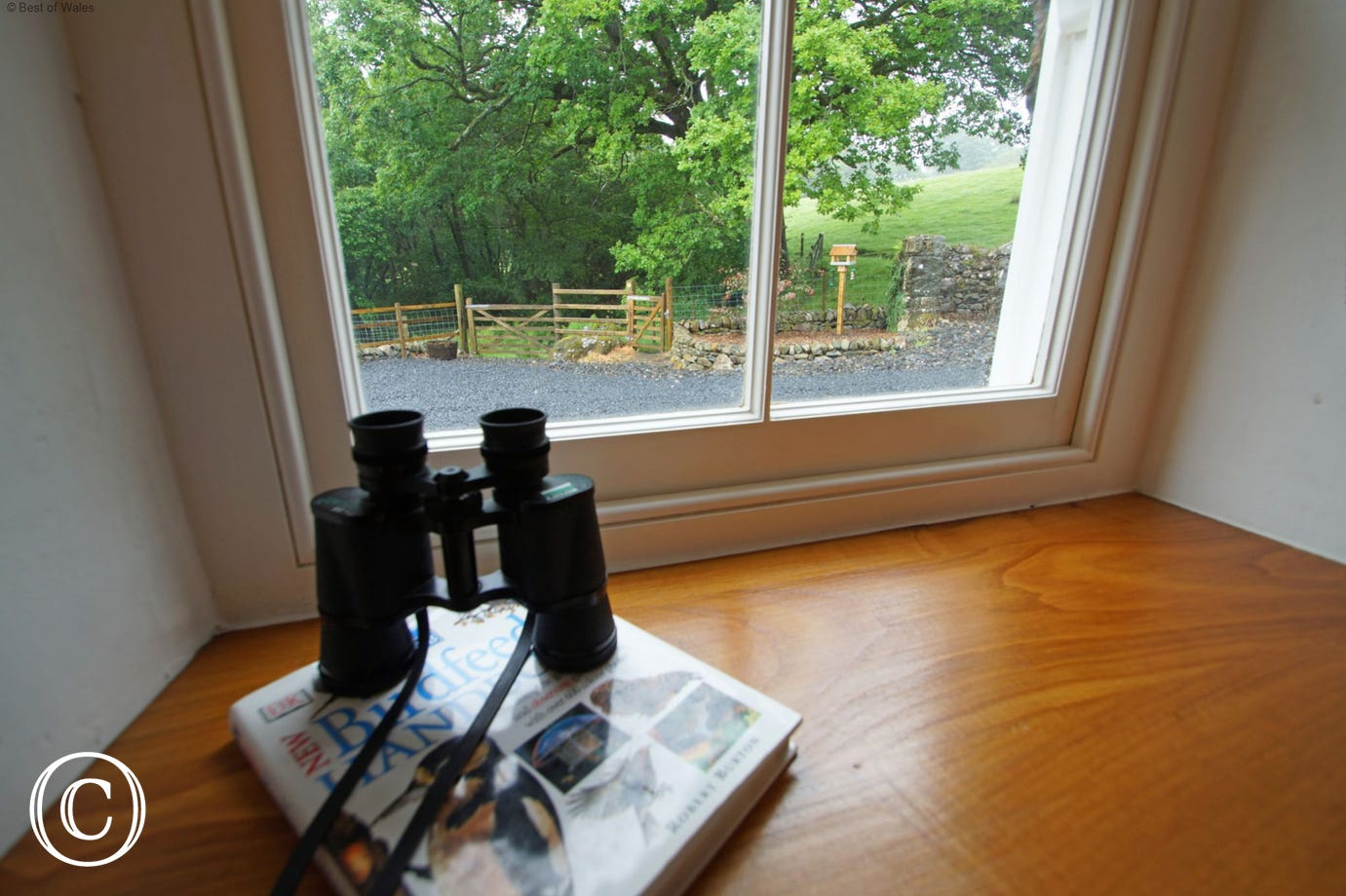 Relax and enjoy the views and bird life from your Snowdonia retreat