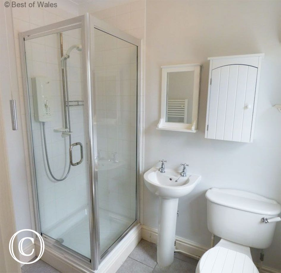 Family room bathroom with shower