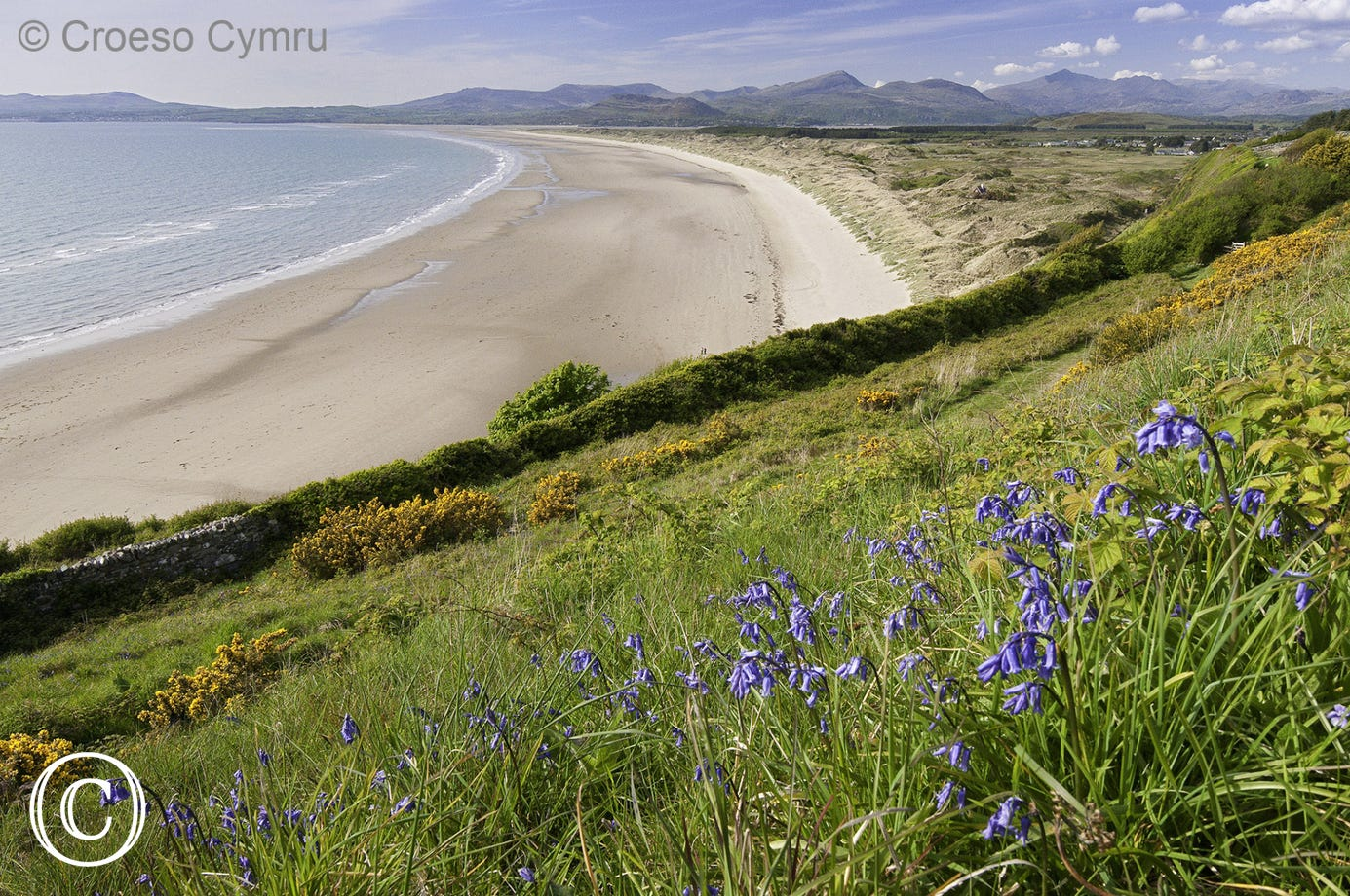 Harlech Beach - another blue flag beach within a few miles