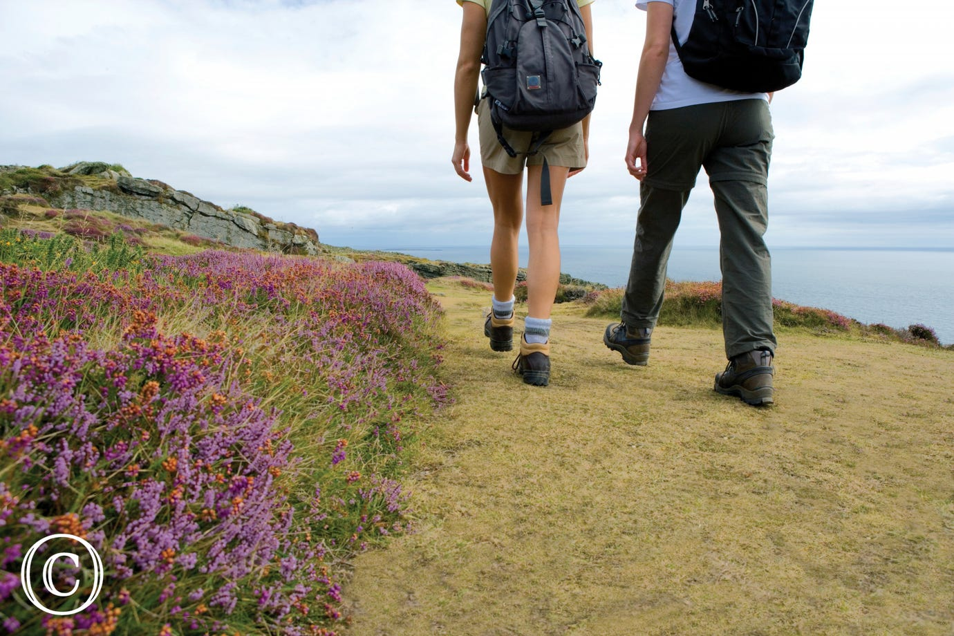 Visit Pembrokeshire to walk the coastal footpaths.