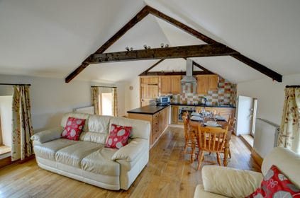 Open-plan, bright living space on the first floor of Brynmeurig with high beamed ceiling