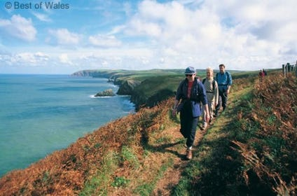 Path from the cottage leads down to the Pembrokeshire Coastal Path